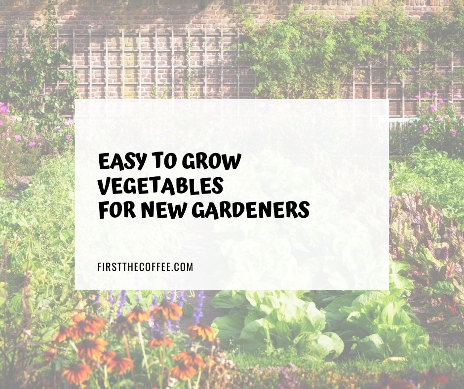 Easy to Grow Vegetables for New Gardeners